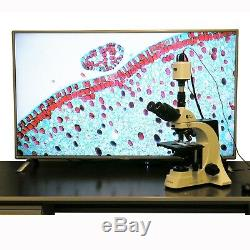 AmScope HD1080 1920x1080 Full HD HDMI Microscope Camera